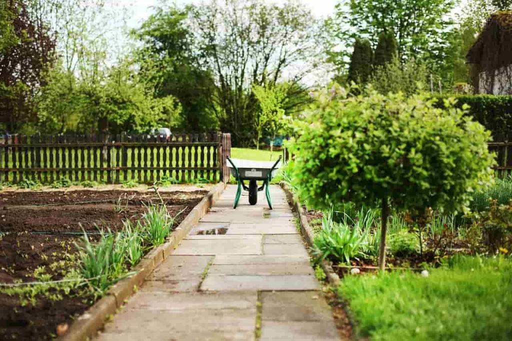 Тачка незаменима на садовом участке