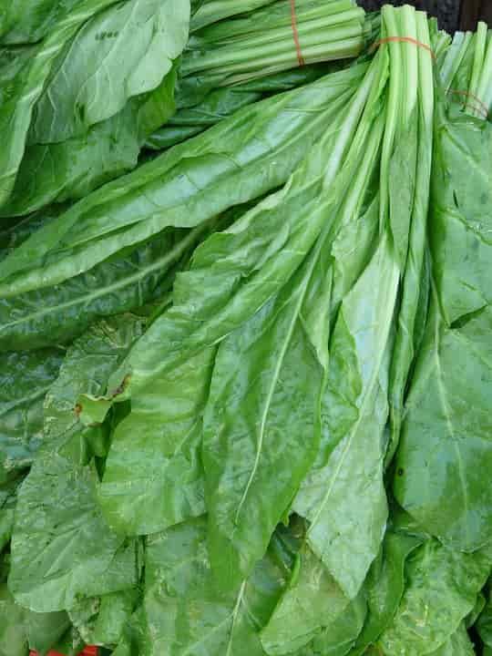 Зеленый шпинат